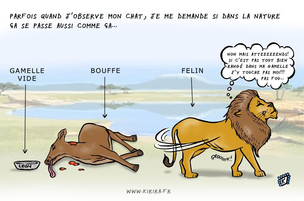 bouffe lion blog